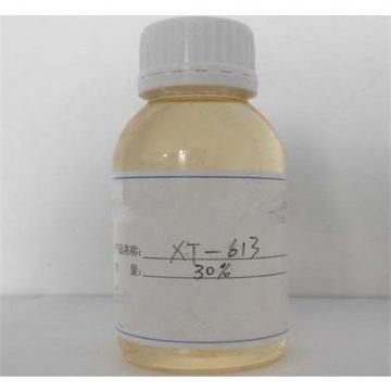 Copolymères acrylique-acrylate-sulfosel de haute pureté XT-613 pour les usines de dessalement